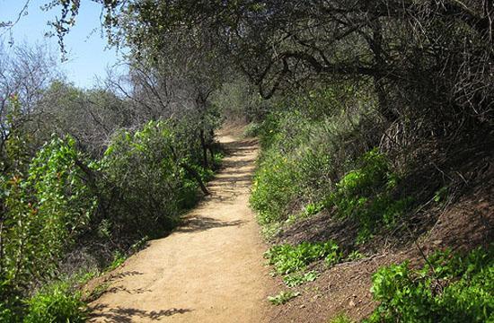 Hike Through TimeMay 14