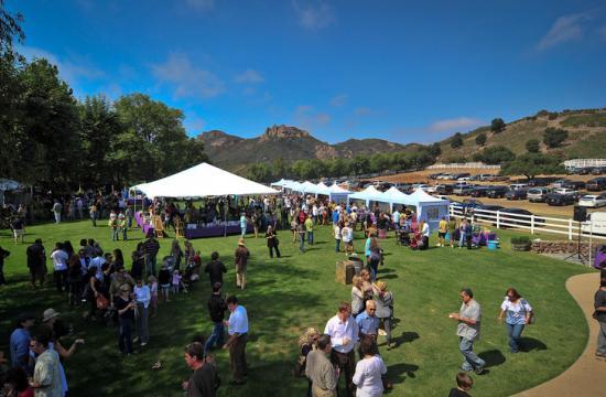 The Malibu Family Wines Grape Crush was held Sunday