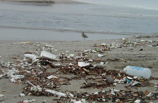 Trash deposited on the beach at the Pico-Kenter storm drain after a rainstorm in 2007. Note the small bits and pieces of styrofoam which are often mistaken as food by birds. Ingested plastic can block a bird's intestines leading to death.