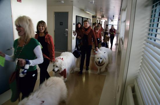 Some of the dogs and their owners spreading holiday cheer on Tuesday.