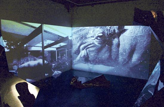 Adam Berg's Endangered Spaces is projected by a HD video diptych projection of John Lautner's Beyer House.