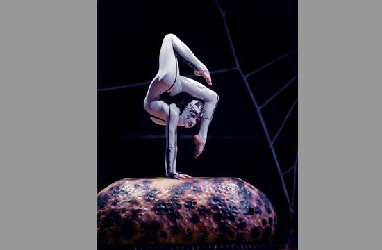 "Cirque du Soleil's ""OVO"" opens tonight with performances through March 25."