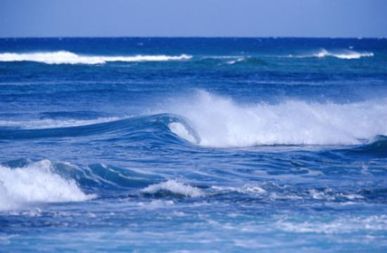 """The theme for the """"My Perfect Ocean"""" contest is """"Youth: the Next Wave of Change."""""""