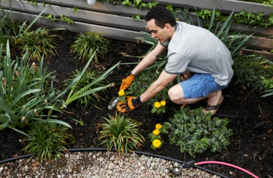 Gardening is one of the best ways to tune your body into the seasonal fluctuations in your environment.