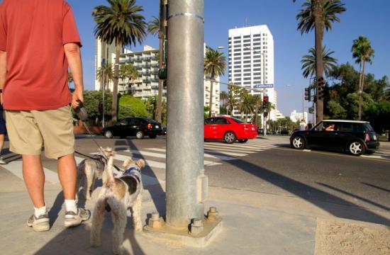 The Pedestrian Action Plan would make Santa Monica's sidewalks more pedestrian-friendly.