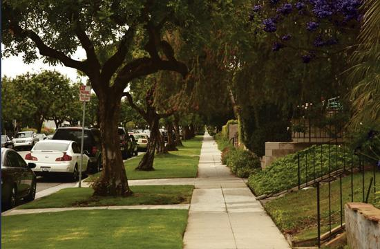 Santa Monica council members last week discussed how to better maintain Santa Monica's eight different neighborhoods.