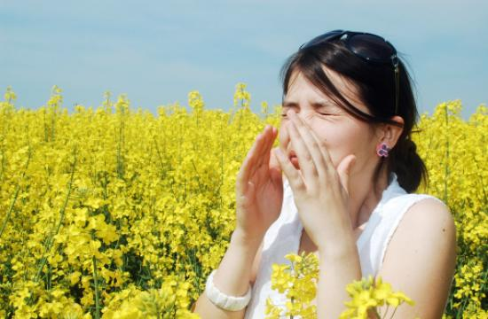 There are several nutrients which are quite helpful when it comes to allergy.