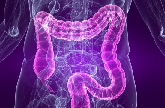 Irritable Bowel Syndrome is considered to be a functional disorder
