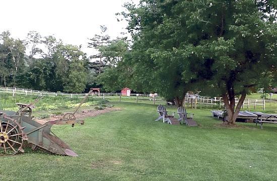 The Cedar Circle Farm Field and Paddock.