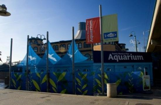 Heal the Bay's Santa Monica Pier Aquarium is among 19 Sustainable Quality Awards finalists.