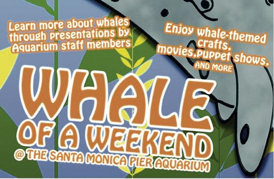 """Santa Monica Pier Aquarium will host """"Whale Of A Weekend"""" this Saturday and Sunday from 12:30-5 pm."""