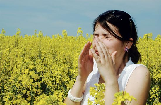 When the immune system overreacts to allergens – pollen