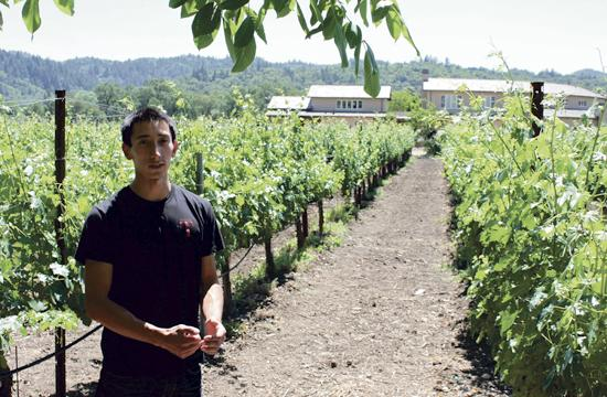 Winemaker Emil Tedeschi explains the wines that his family makes at Calistoga in the Napa Valley.
