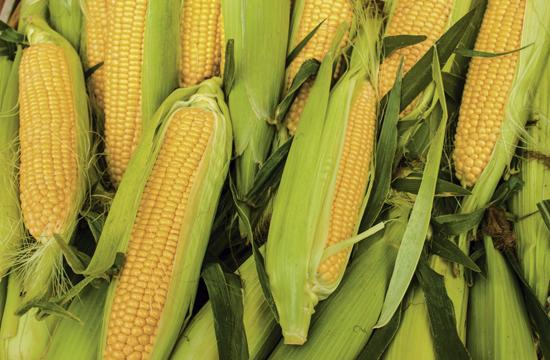 Corn has heart-protective properties due to its fiber and high folate (vitamin B9) content.