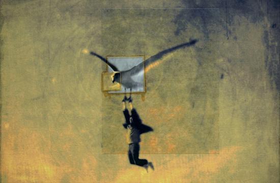 Kamil Vojnar's 'Flying Lessons