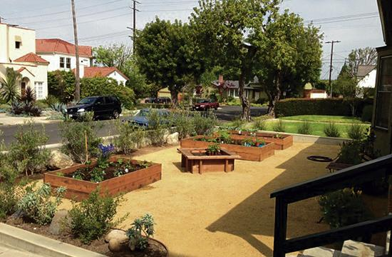 """This garden was created by a student in SMC Community Education's """"Organic Gardening"""" class"""