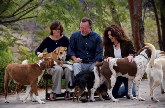Pet owners now have an alternative to burial or cremation: alkaline hydrolysis