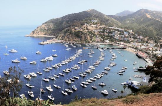 Latest news from Santa Catalina Island.