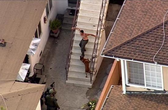 The suspect was taken into custody about 5 p.m. Saturday after he emerged shirtless and limping down an outdoor stairway