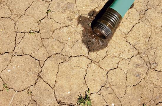 Drought Spurring Ideas
