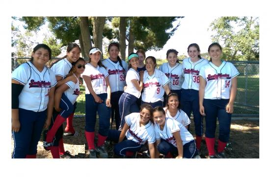The 14U Gold All-Star Team heading to Nationals (pictured left to right