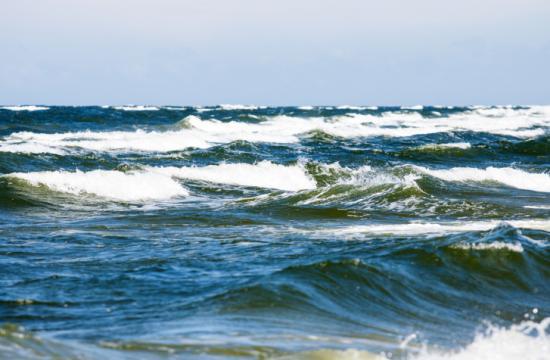 The latest surf news.