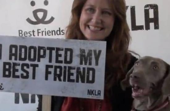 Adopt your new best friend at Best Friends NKLA Super Adoption
