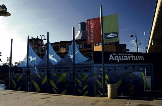 As part of Heal The Bay's Santa Monica Pier Aquarium's 30th anniversary celebration