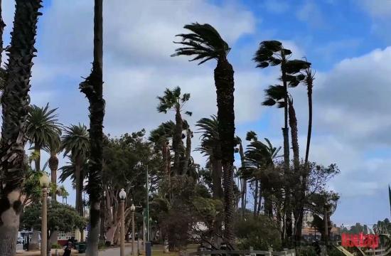 Santa Monica Winds