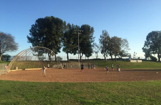 Little Leaguers Enjoying Spring Training