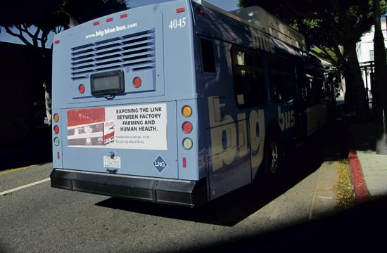Non-profit Human Farming Association's current ad on a Big Blue Bus this week.