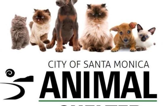 Friends of the Santa Monica Animal Shelter